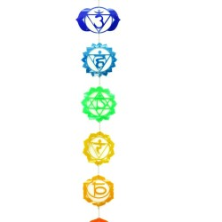 Yoga to Explore Your Chakras