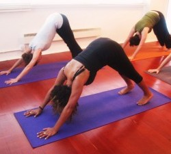 Improve Your Vinyasa (Jumping through & jumping back)