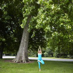 Angelika's Spring Yoga Workshop
